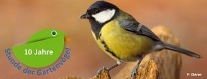 Stunde der Vögel, Natur, Beobachtung