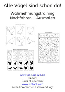 Vögel, Wahrnehmungstraining, Wahrnehmung, Download, AFS-Methode, Stephany Koujou, Koujou, Legasthenie, Legasthenietraining, Dyskalkulie, Dyskalkulietraining