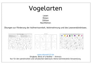 Vogelarten, Wahrnehmung, Aufmerksamkeit, Lesen, rechnen, zählen, malen, ausmalen, nachmalen, Feinmotorik, Legasthenie, Dyskalkulie, Legasthenietraining, Dyskalkulietraining, AFS-Methode, Download